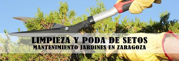 Mantenimiento y limpieza de setos en jardines for Trabajo de mantenimiento de jardines