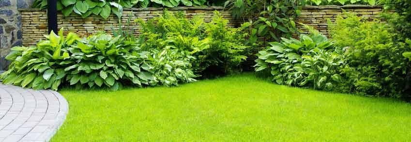 Cuida el jard n de tu comunidad en primavera for Jardines de primavera