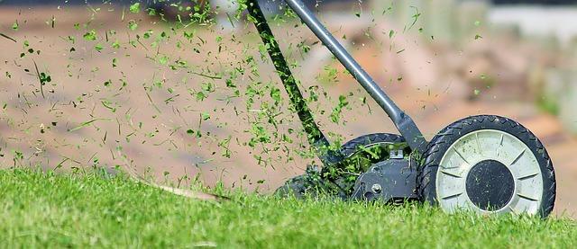 Preparar el jardin para primavera